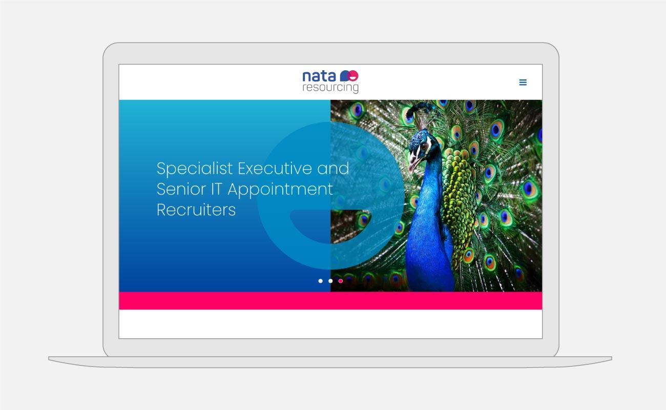 Nata Resourcing Website Design   John Shannon   Web Designer   Brighton